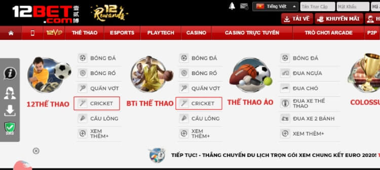 cricket tại 12bet
